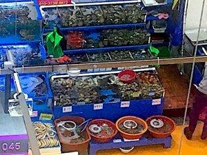 דוכן בשוק הדגים